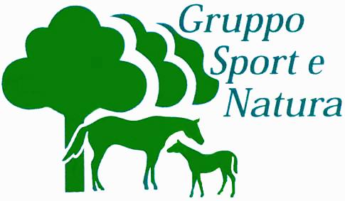 logo GSN original
