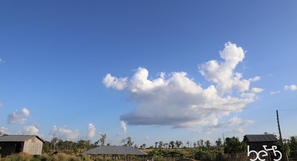 Dodici giorni in Cambogia image